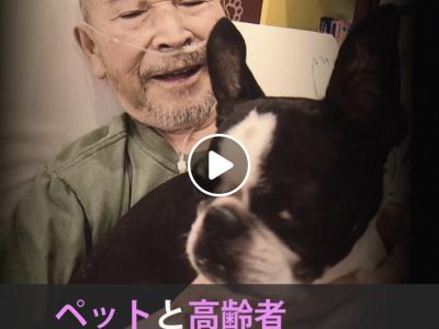 NHK クローズアップ現代+