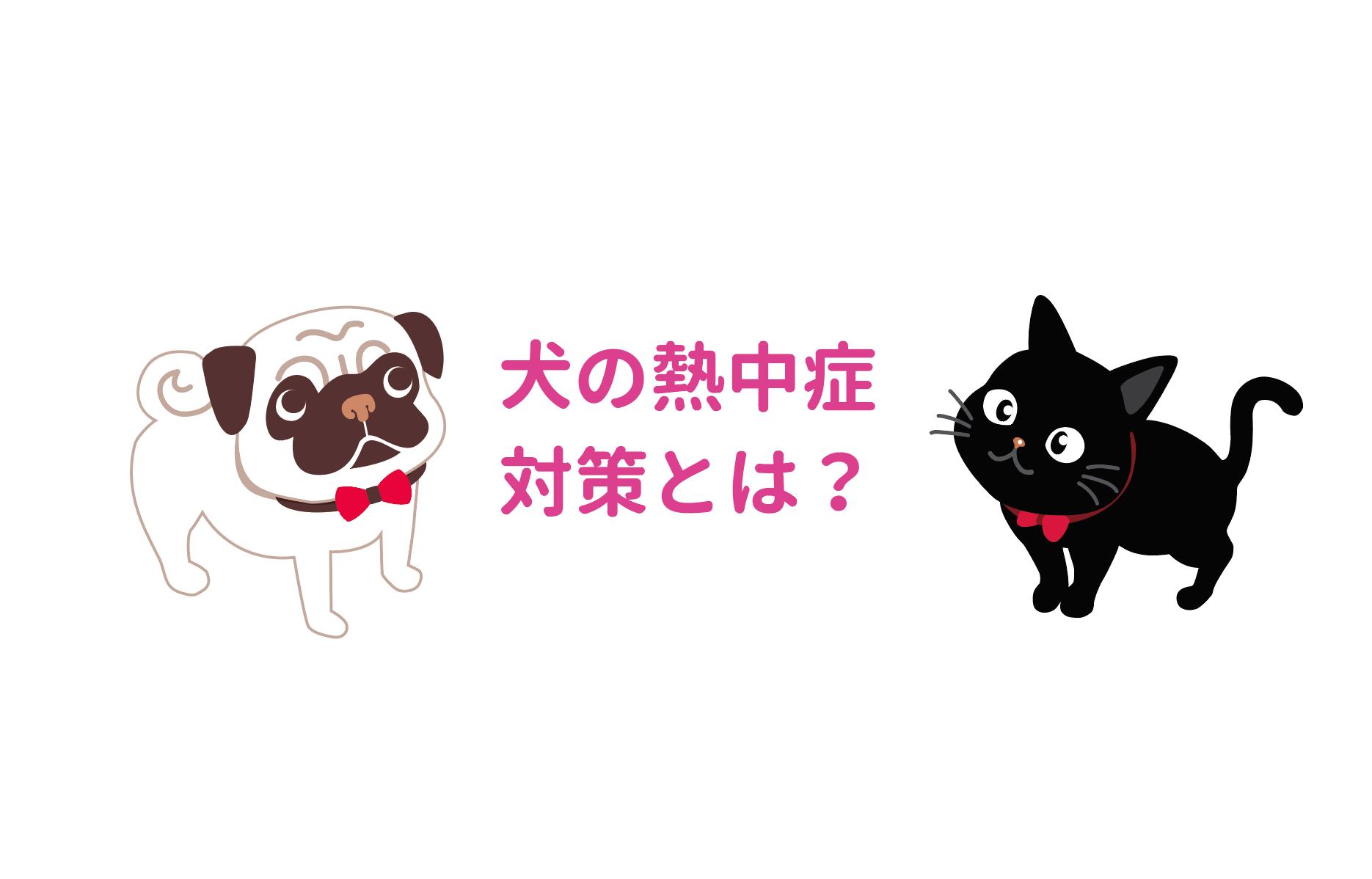 犬の熱中症に注意 わおん ペット共生型福祉施設